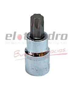 BOCALLAVE TORX MACHO T20 RHEIN