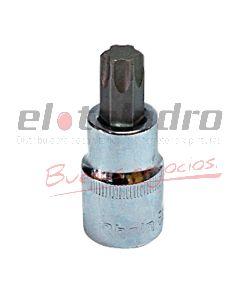BOCALLAVE TORX MACHO T25 RHEIN