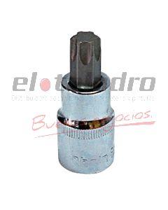 BOCALLAVE TORX MACHO T40 RHEIN